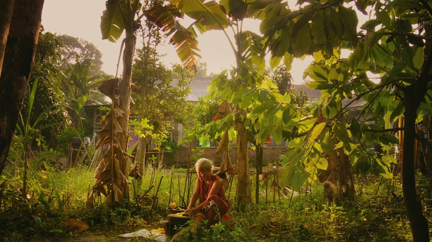 The Look of Silence (9)