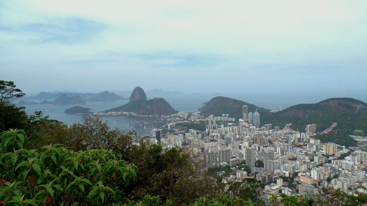 RIO1 (1)