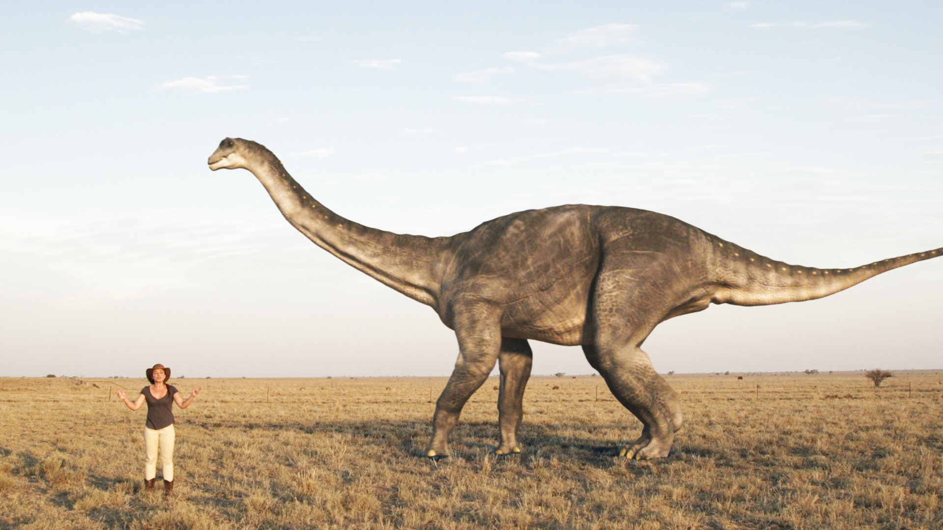 «Dinosaurs in the Outback»